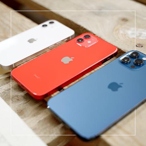 smallbug_Insta_iPhone12_1080x1080px_10-2021FkQYY9qSyFDZz
